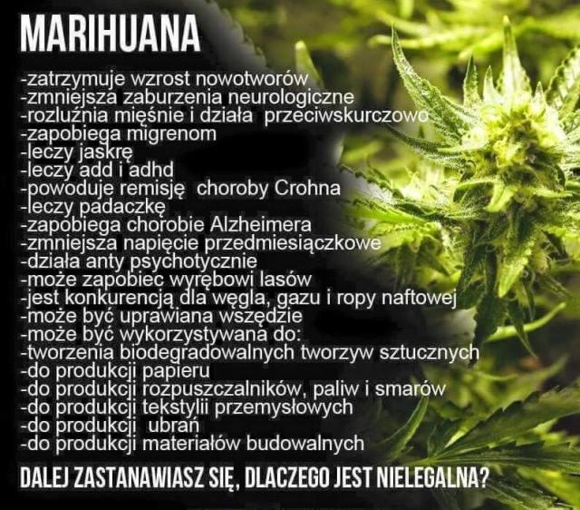 Dobroczynne działanie marihuany